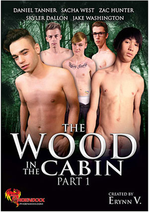 The Wood In The Cabin 1