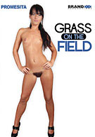 Grass On The Field 1